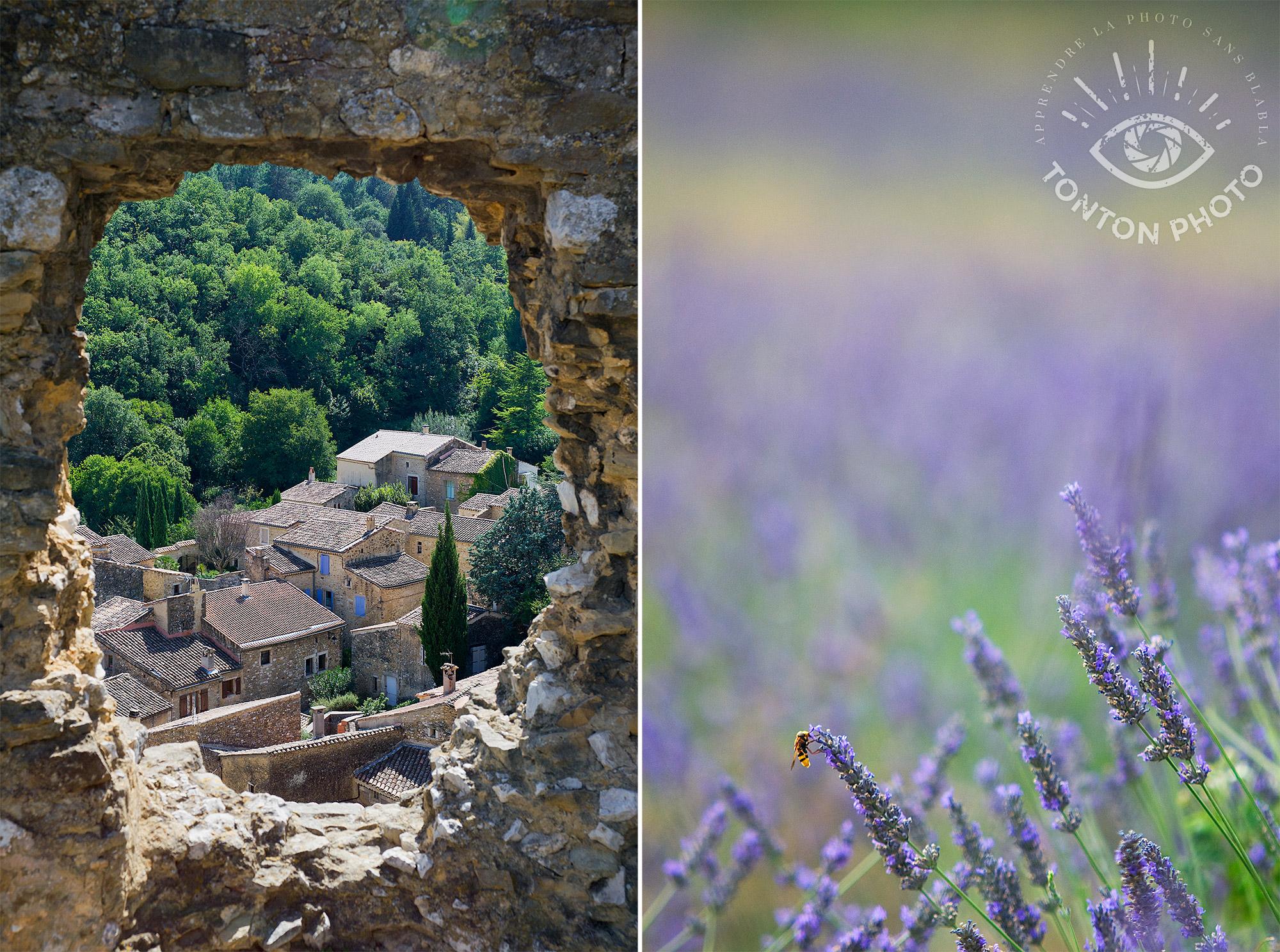 Village de Saint-Montan vu depuis les ruines du château (Ardèche), et abeille butinant un brin de lavandin (Drôme) © Clément Racineux / Tonton Photo