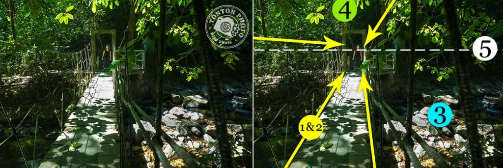 Tonton Photo • Comment guider le regard grâce aux perspectives • Exemple n°4