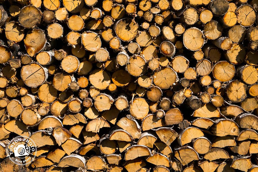 Le bois de bouleau est prêt pour l'hiver. Laponie Mush, Suède © Clément Racineux / Tonton Photo