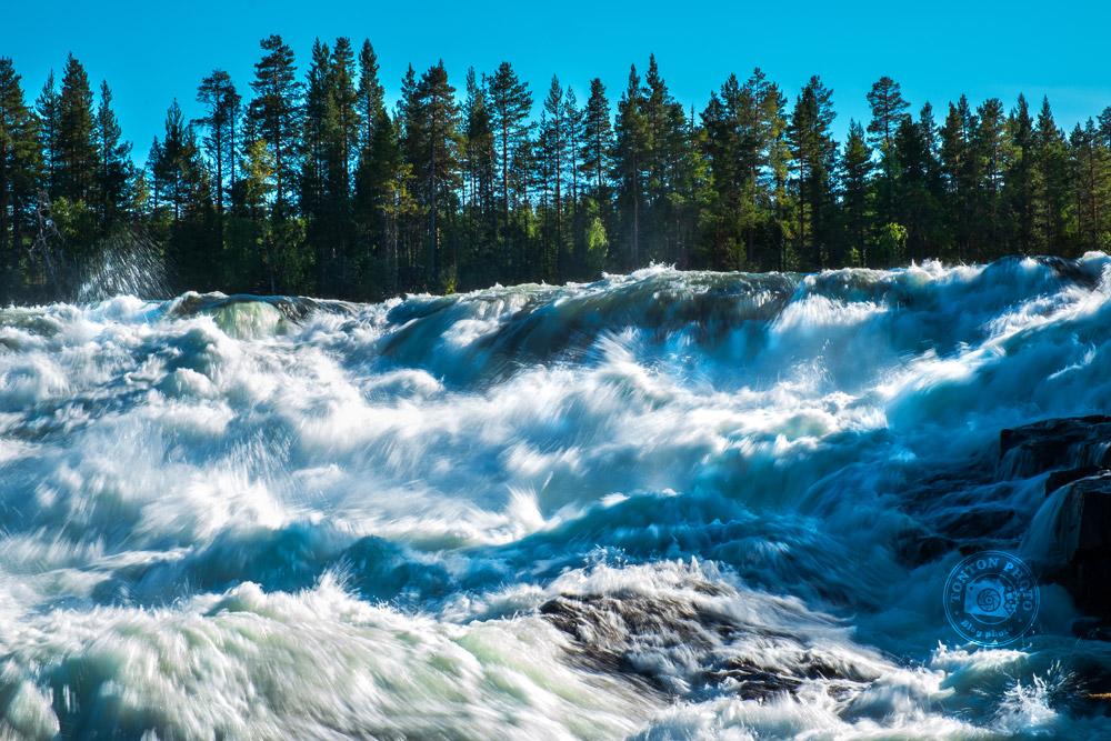 Storforsen : les plus grands rapides d'Europe. Laponie, Suède © Clément Racineux / Tonton Photo