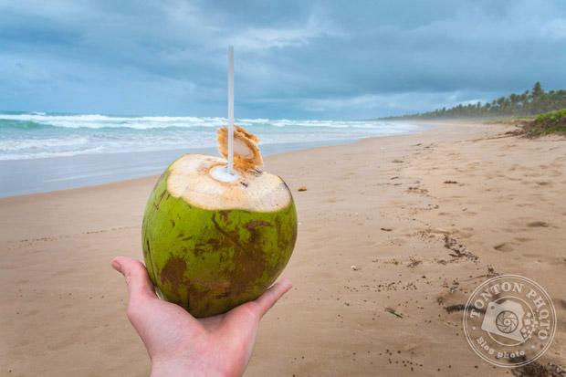 Dure dure la vie au Brésil ! Sur une plage sauvage et immense de Praia Do Forte, Bahia, Brésil © Clément Racineux / Tonton Photo
