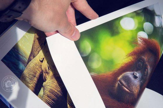 J'ai testé pour vous l'impression d'album photo chez AlbumPhoto.fr - Cewe © Tonton Photo