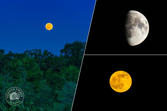 Comment photographier la lune ? Un tutoriel de Tonton Photo
