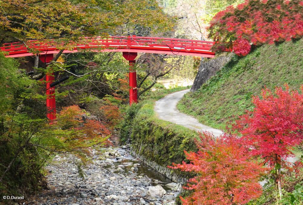 Joli pont japonisant enveloppé des couleurs d'automne. Koyasan, Japon © D. Durand
