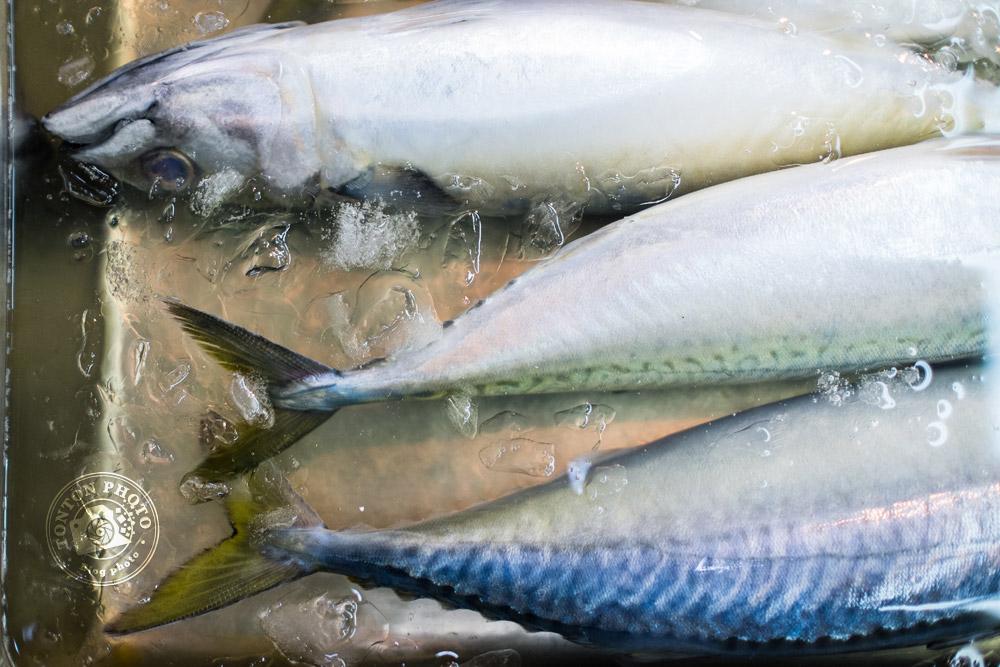Sur le marché aux poissons et fruits de mer de Tsukiji, Tokyo, Japon © Clément Racineux / Tonton Photo