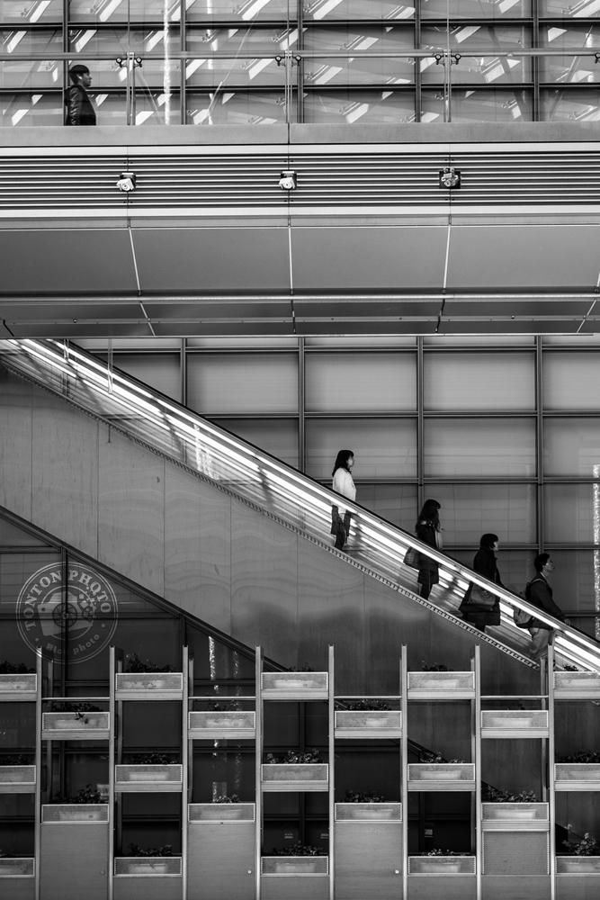 Graphisme des lignes. Quartier de Shiodome, Tokyo © Clément Racineux / Tonton Photo