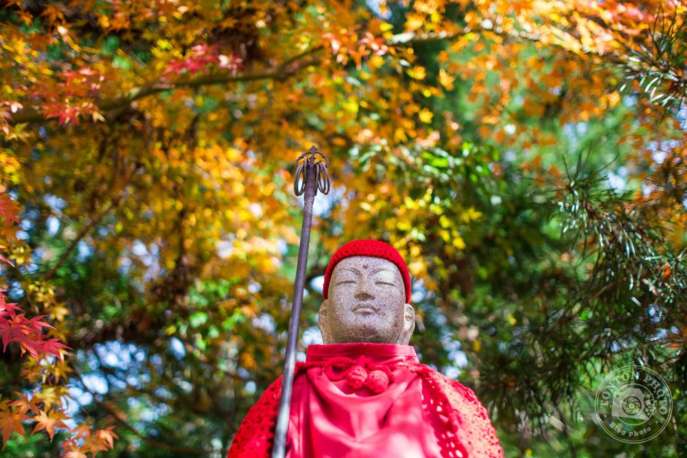 L'un des innombrables 'gizu' (divinités) dans le sanctuaire d'Okuno-in, Koyasan, Japon © Clément Racineux / Tonton Photo