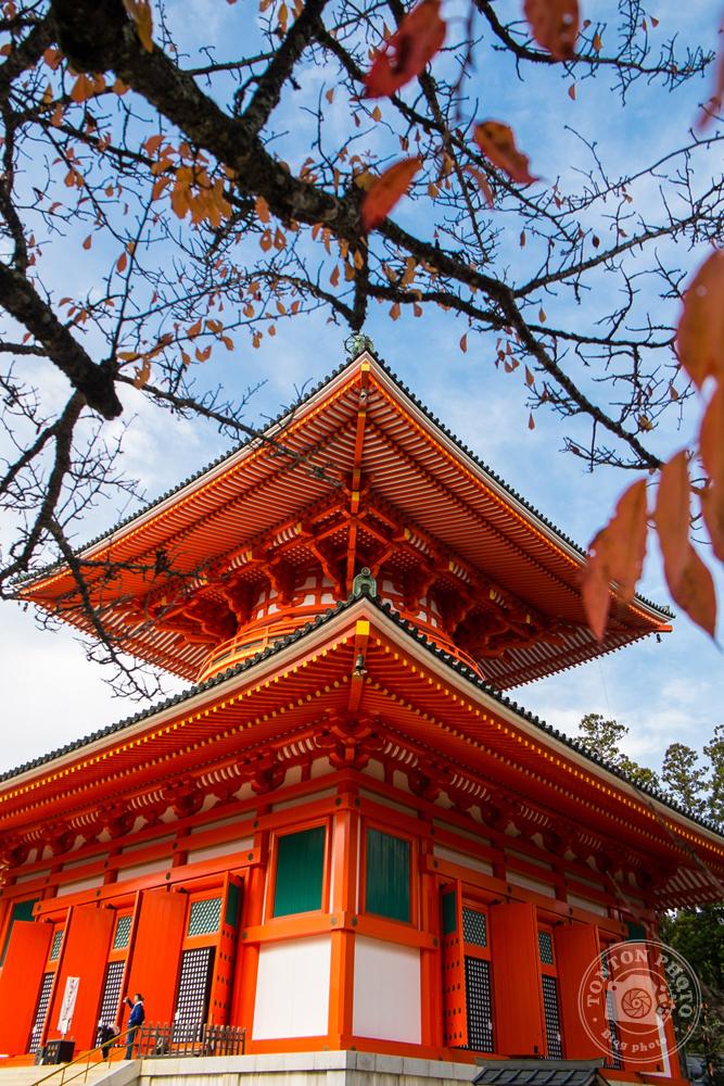 Le splendide temple Konpondaito, Koyasan, Japon © Clément Racineux / Tonton Photo
