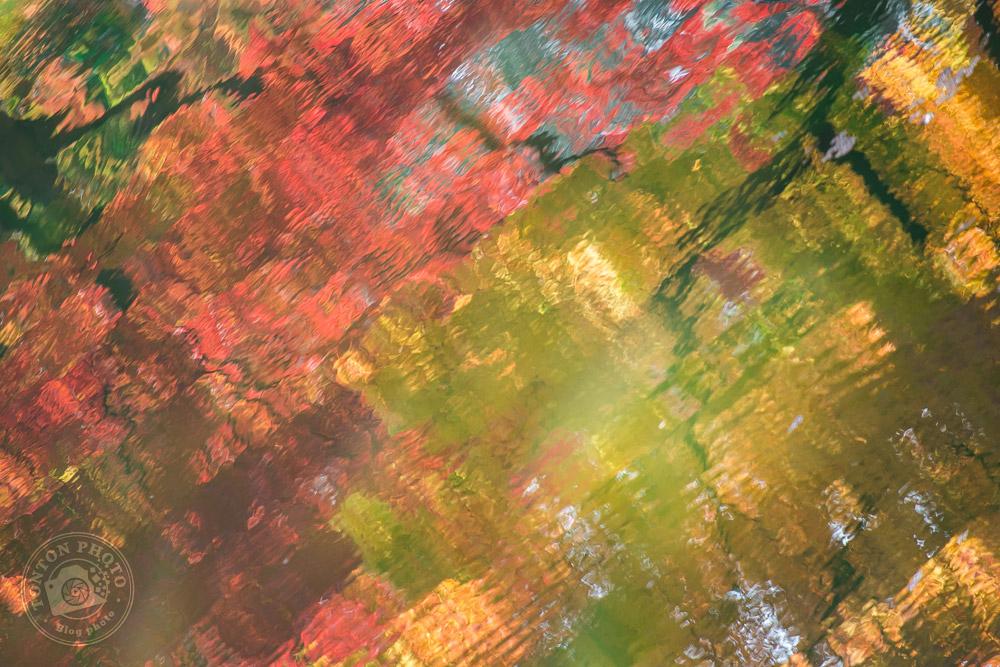 Reflets dans les eaux du lac Sagi-Ike des incroyables couleurs des arbres à l'automne. Nara, Japon  © Clément Racineux / Tonton Photo