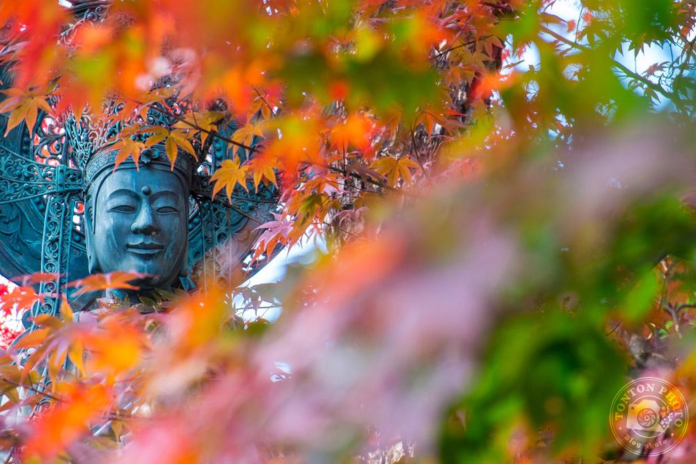 Statue et couleurs d'automne dans le monastère bouddhiste de Shunko-In, Kyoto, Japon © Clément Racineux / Tonton Photo