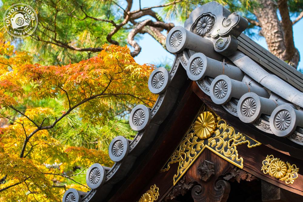 Toiture typique et couleurs d'automne dans le monastère bouddhiste de Shunko-In, Kyoto, Japon © Clément Racineux / Tonton Photo