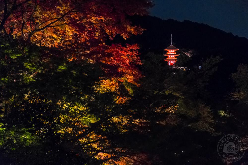 Pendant la fête des illuminations au Temple Kiomizu, Kyoto, Japon © Clément Racineux / Tonton Photo