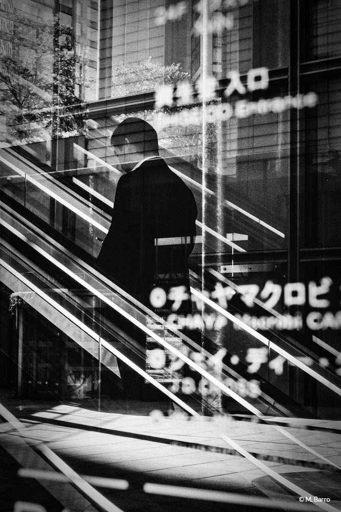 Lignes & reflets, Tokyo, Japon © M. Barro