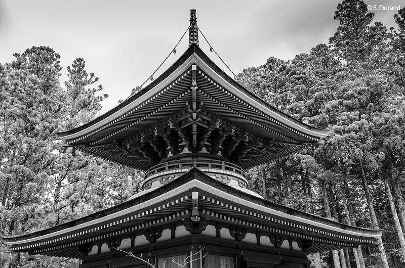 Architecture du temple Konpondaito, Koyasan, Japon © S. Durand