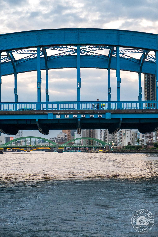 En croisière sur la rivière Sumida, Tokyo, Japon © Clément Racineux / Tonton Photo