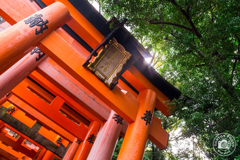 Les fameux torii du sanctuaire Fushimi Inari Taisha, Kyoto, Japon © Clément Racineux / Tonton Photo