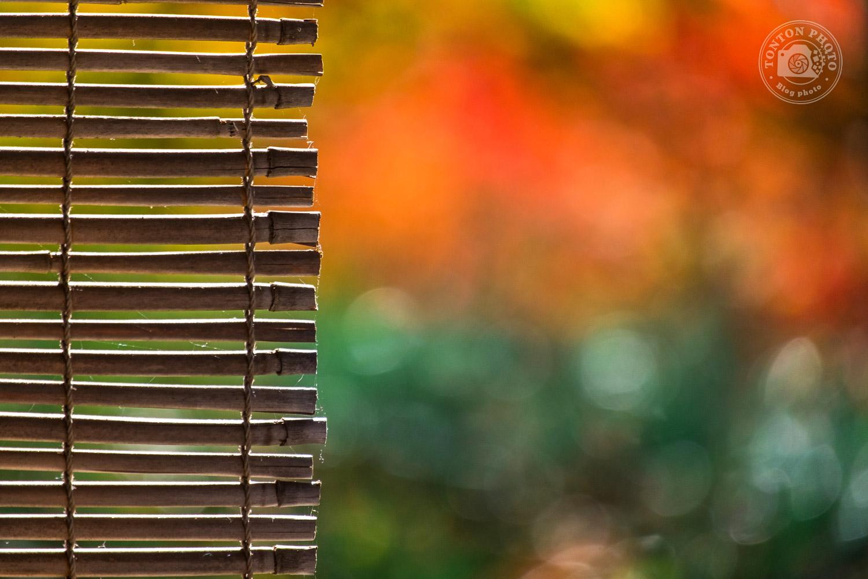 Store de temple zen et bokeh de couleurs d'automne, temple Eikando, Kyoto, Japon © Clément Racineux / Tonton Photo