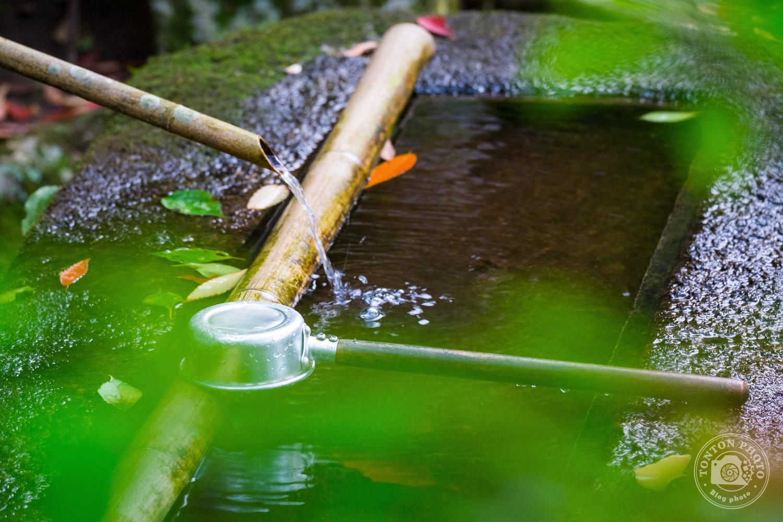 Fontaine aux ablutions à l'entrée du temple Daisho-In, île de Miyajima, Japon © Clément Racineux / Tonton Photo