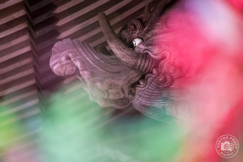 Détail de la charpente du temple Daisho-In. Île de Miyajima, Japon © Clément Racineux / Tonton Photo