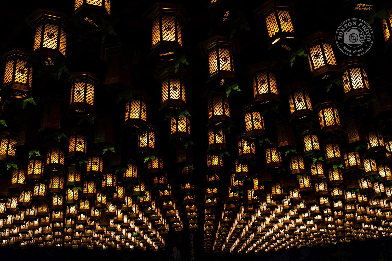 Le temple Daisho-In et ses centaines de lanternes. Île de Miyajima, Japon © Clément Racineux / Tonton Photo
