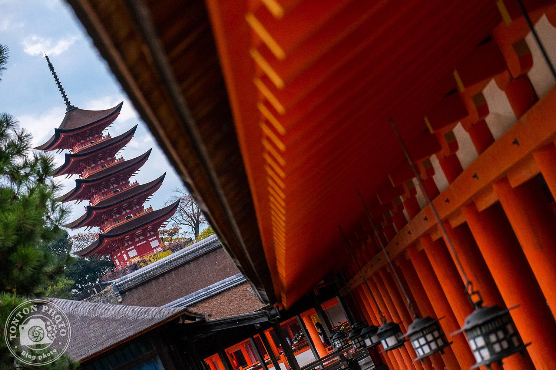 La pagode à 5 étages (Goju-no-to) de l'île de Miyajima, Japon © Clément Racineux / Tonton Photo