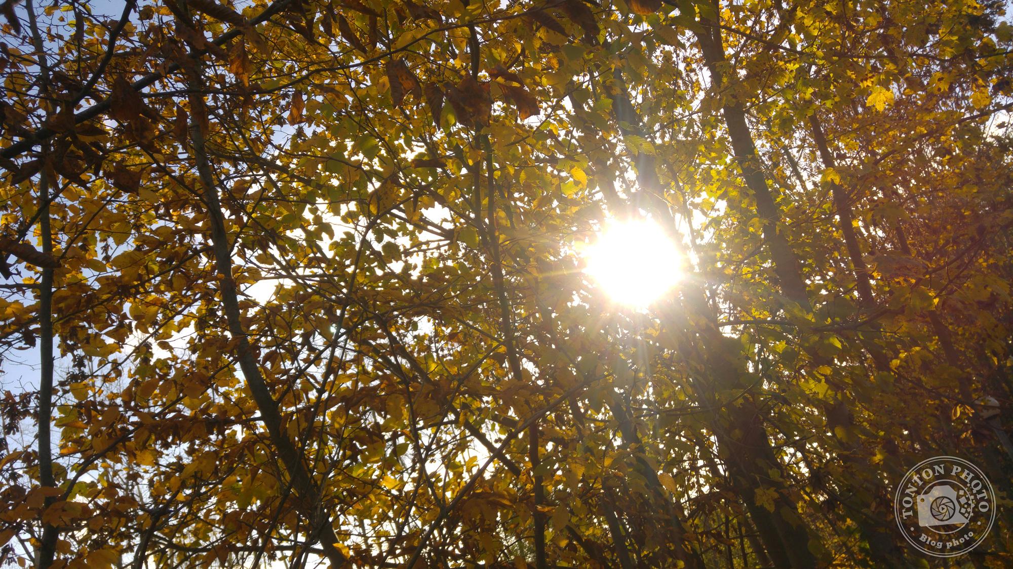 Avant post-traitement : observez la tâche blanche dûe à la sur-exposition au niveau du soleil © Clément Racineux / Tonton Photo