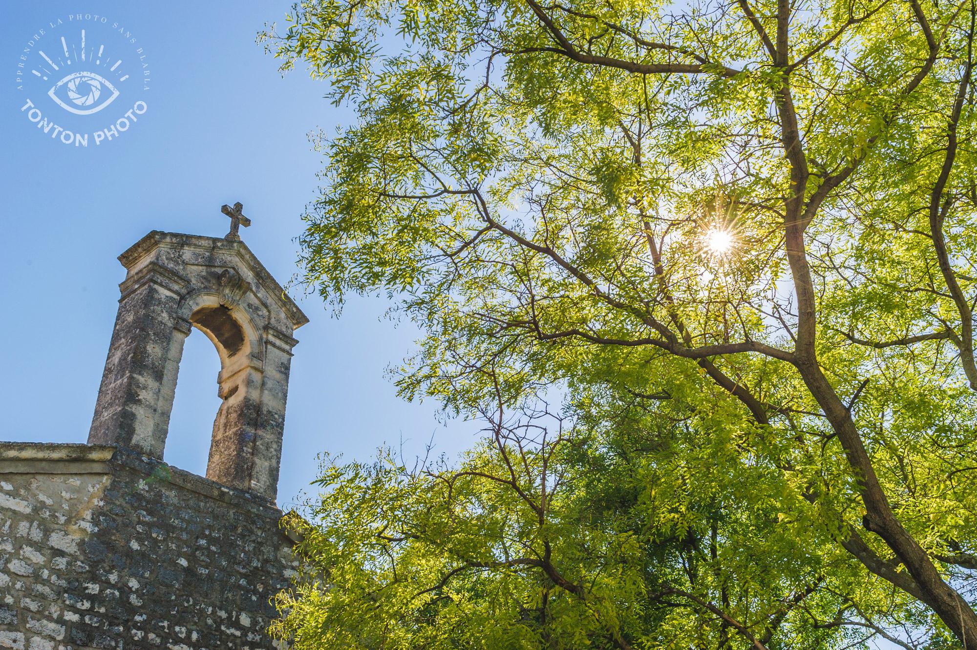 En cachant partiellement le soleil derrière les troncs d'arbres, j'ai pu capturer le soleil haut dans le ciel sans pour autant tomber dans le piège du contre-jour. Drôme, France. © Tonton Photo