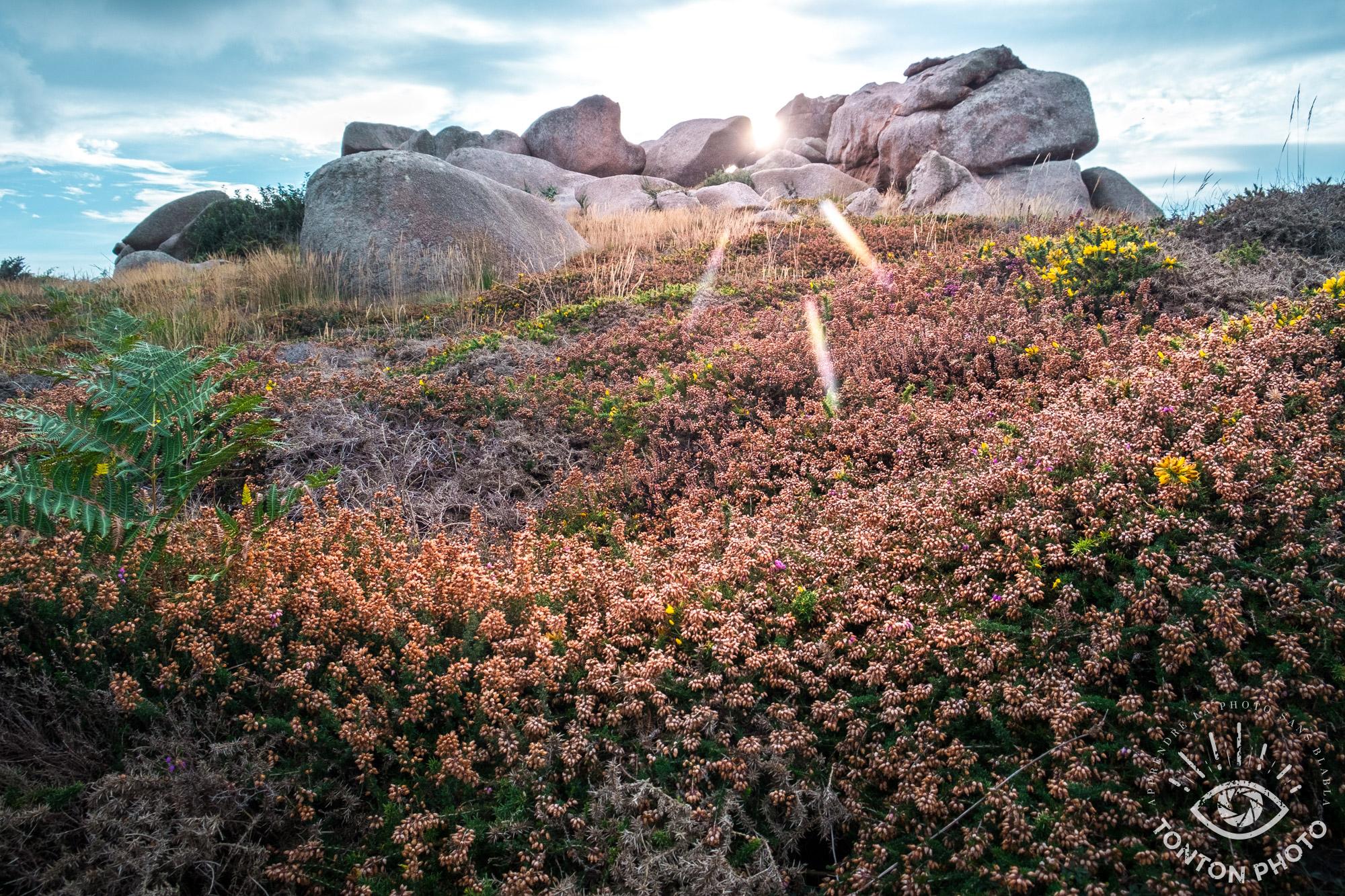 En cachant partiellement le soleil derrière les rochers, j'ai pu capturer les rayons du soleil de manière à dynamiser la photo. Côte de granit rose, Côtes d'Armor. © Tonton Photo