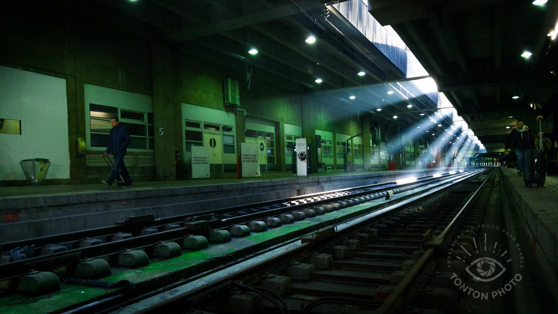 Dans le rush d'une journée bien chargée, je devais attraper mon train en gare Montparnasse à Paris... Mais la nature s'est rappelée à moi dans une lumière très belle, et je n'ai pas pu m'empêcher de m'arrêter pour saisir cet instant formidable que la plupart des gens ne remarquaient même pas... Dans mon livre, j'explique mes choix techniques et de composition sur cette photo :) © Tonton Photo