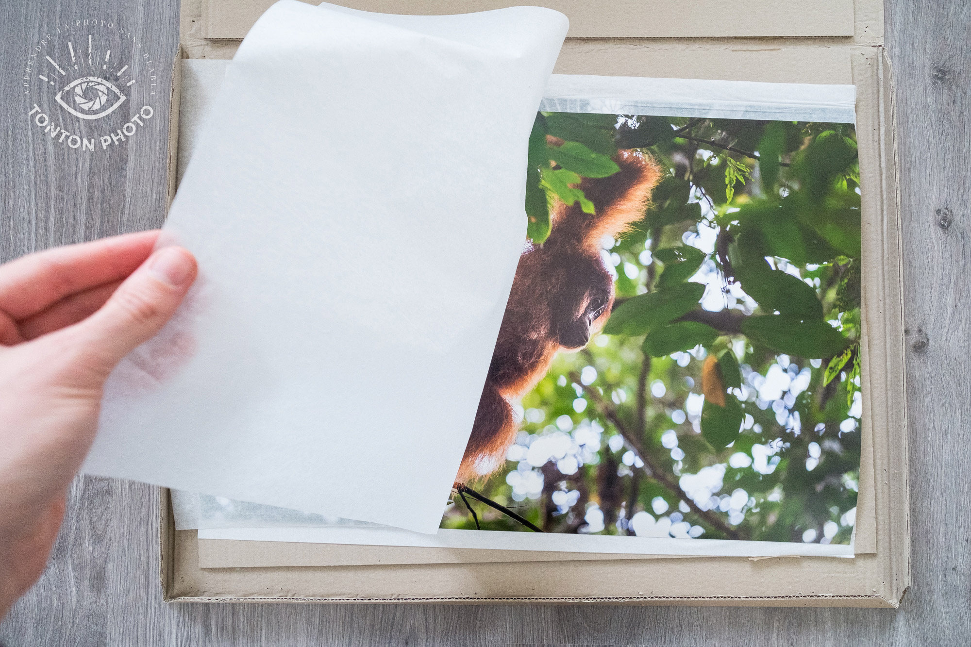 Test labophotos.fr : les tirages arrivent protégés dans 2 épaisseurs de carton et du papier de soie © Tonton Photo
