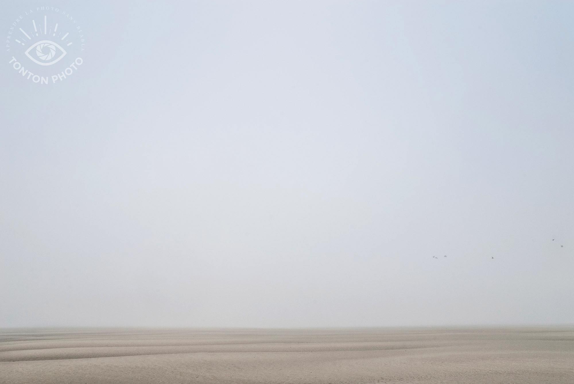 Comment photographier le brouillard ? En Baie de Somme © Clément Racineux / Tonton Photo