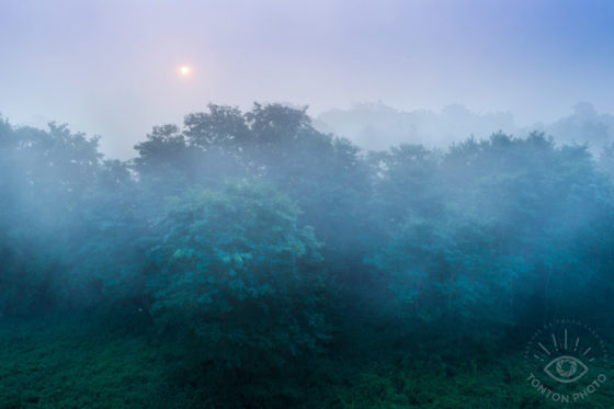 Comment photographier le brouillard ? © Clément Racineux / Tonton Photo