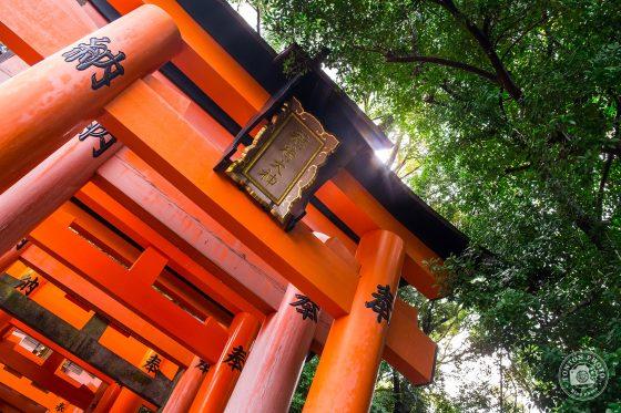 Japon, les photos du second voyage avec des lecteurs © Tonton Photo